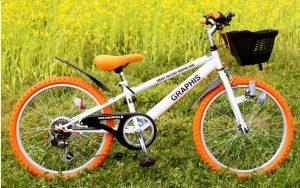 自転車10歳